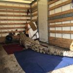Převoz krokodýla od lovce z chrudimska na akci Lacoste